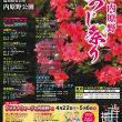 つつじ祭りB2ポスター-最終